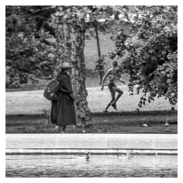 Central Park Oddities by jonniedee