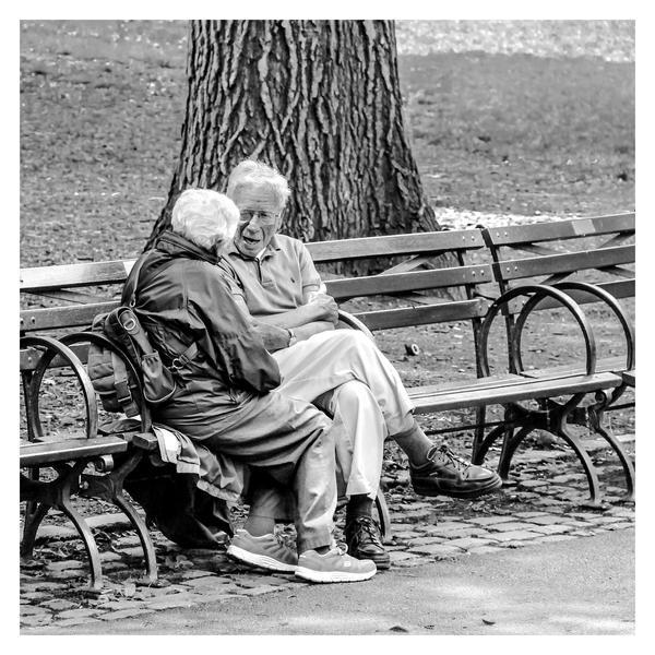 Central Park 6 by jonniedee