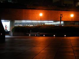 Tokyo by night 6