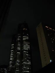 Tokyo by night 7