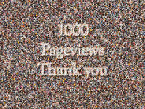 1000 Pageviews Thank you