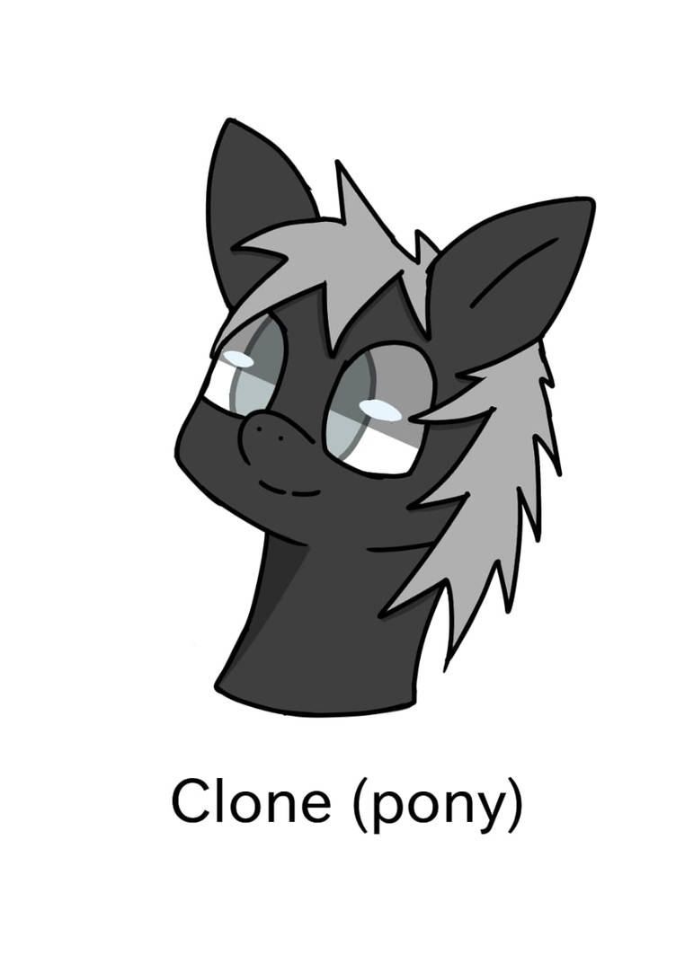 PONY !!!! by clonette