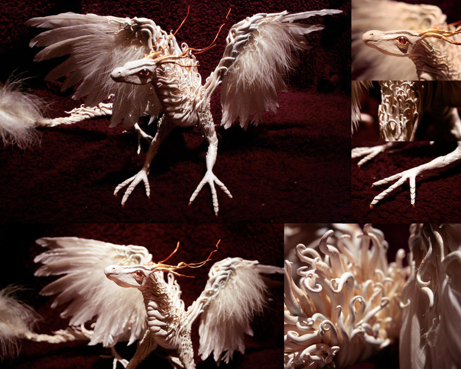 White Dragon by Kiardra
