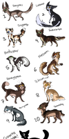 Warrior Cat Doodle Adopts! {CLOSED} by 0palite