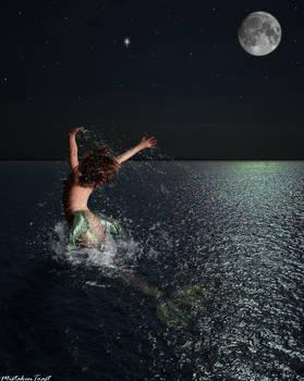 Moonlight Leap