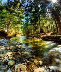 Stream by IraMustyPhotography