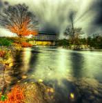 Fall Foliage by IraMustyPhotography