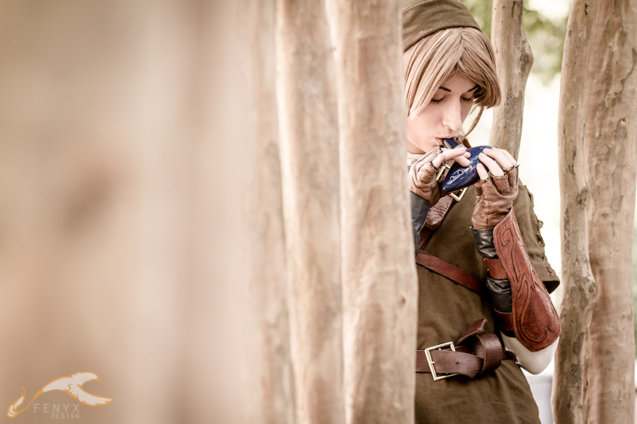 AWA 2010 - Zelda | Link by elysiagriffin