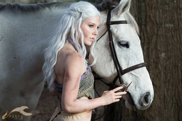 Game of Thrones | Daenerys + Silver
