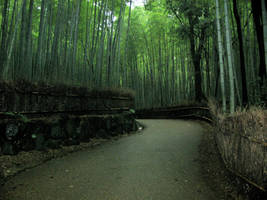 Greenery And Bamboo Stock 17 by neonikkichan