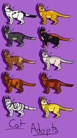 Kitty Adopts 4 by Ribbon-Wren