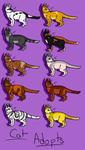Kitty Adopts 4