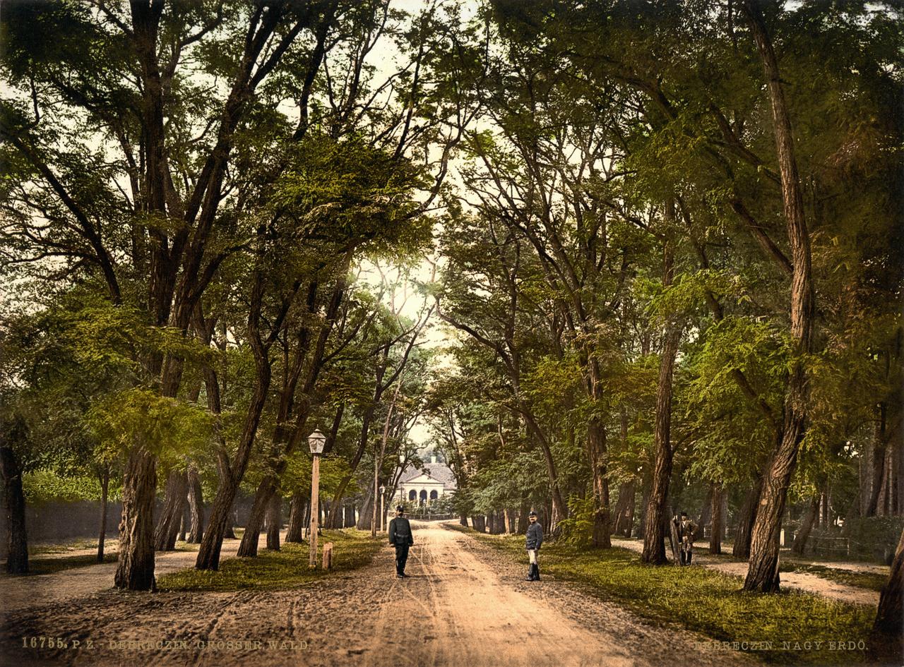 Debrecen, Hungary Restoration by AdamCuerden