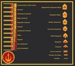 Luminaire Republic Marine Corps ranks