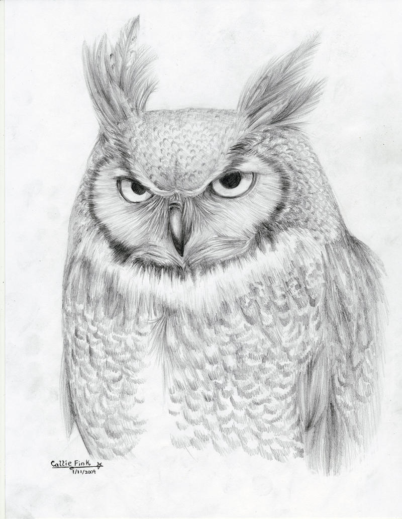 Great horned owl by calliefink on deviantart for Cool drawings of owls