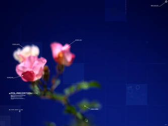 ae - Lost Files: Polorization by aeternitas