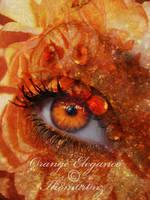 Orange Elegance by LT-Arts