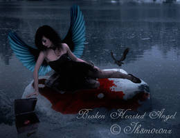Broken Hearted Angel-UP CLOSE by LT-Arts