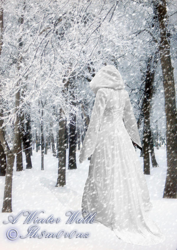 A Winter Walk by LT-Arts