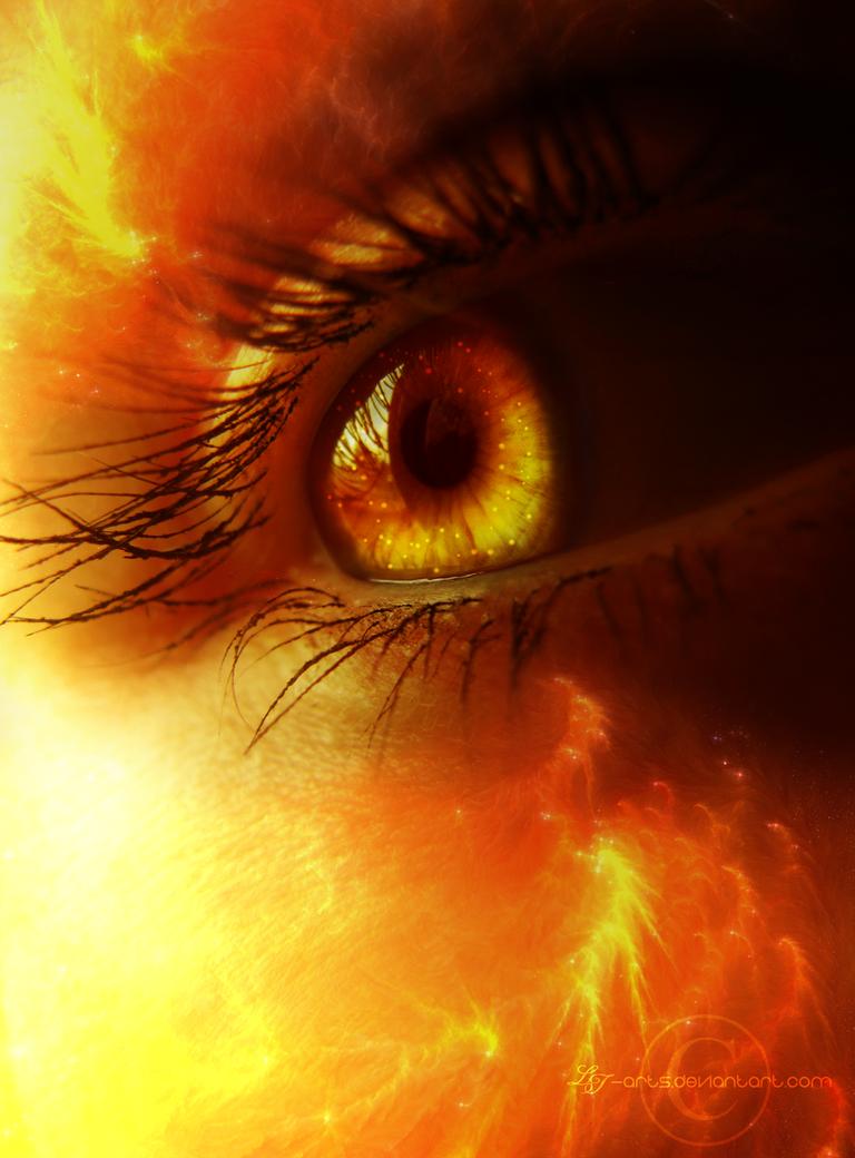 .:Firestorm:. by LT-Arts