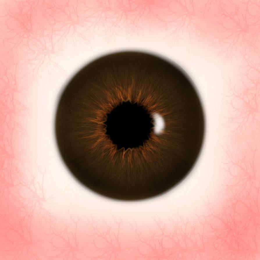 Brown Eye Texture by jfreak86