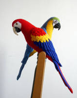 Macaws by LunasCrafts