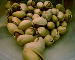 Nutty by mcb011789