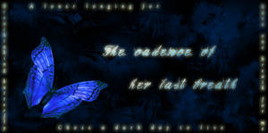 One night butterfly