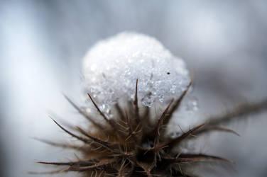 Snow cap by RezaCerna