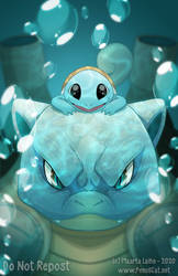 Blastoise and Squirtle