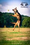 Shanti Jump!