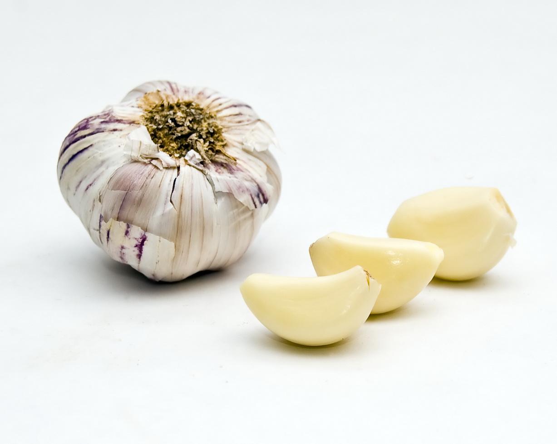 Garlic by Orzel