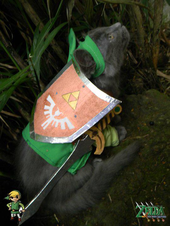 TLoZ Four Paws: Green Link by CyanideKandies