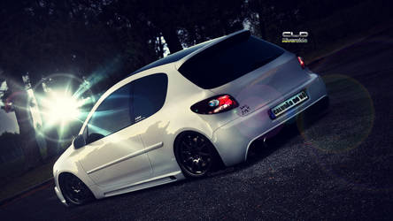 Peugeot 206 - by CLD by ClaudaoCLD