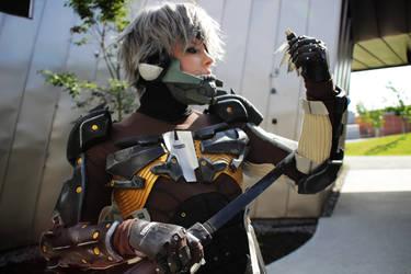Raiden cosplay 3 by hellduck