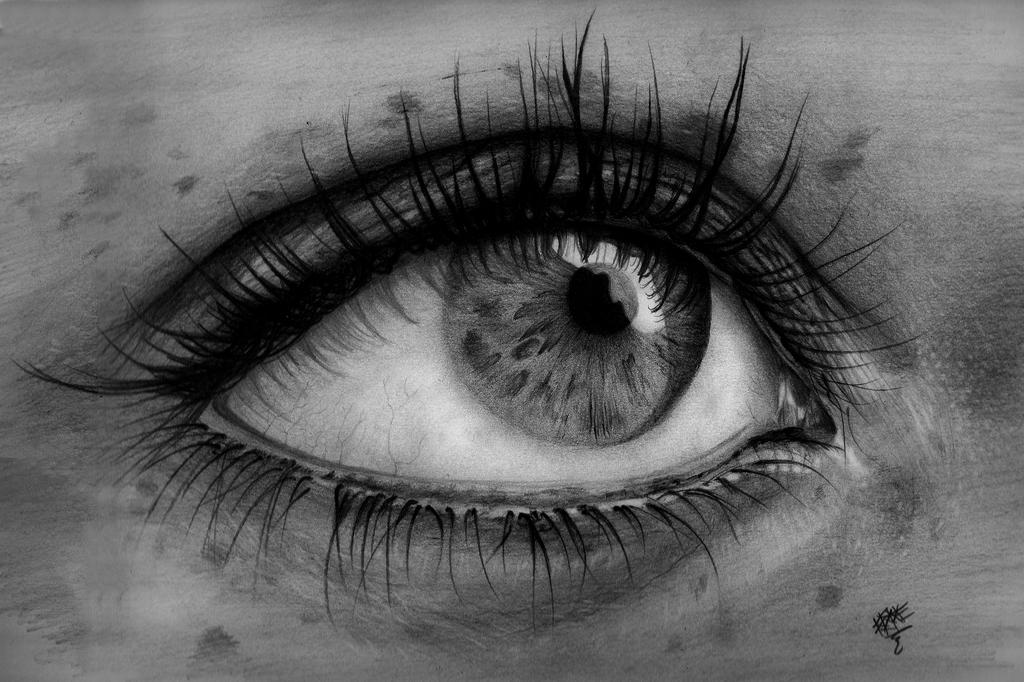 Ladys eye pencil drawing by plexizio