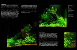 'Aquascape' Green Mountain by StevenChong-no-GMF