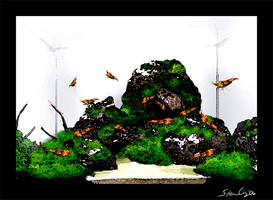 'Aquasketch' Anchialine Pool by StevenChong-no-GMF