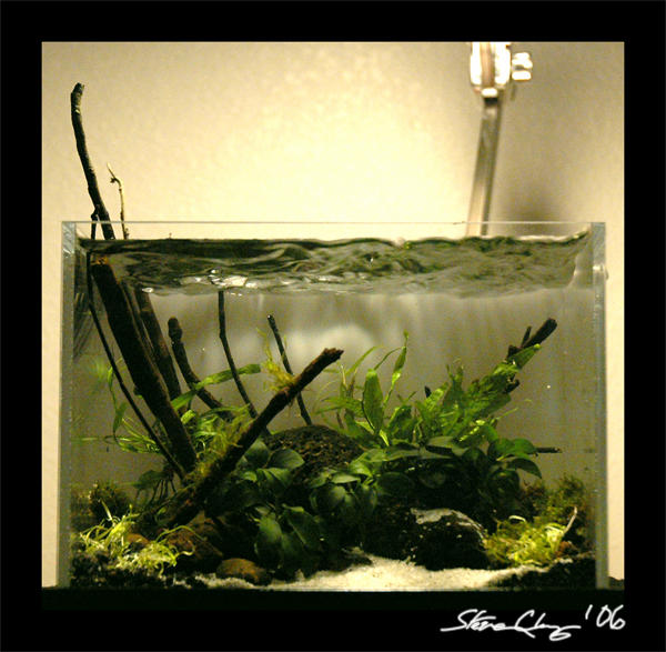 'Aquascape' May Nano 1 By StevenChong-no-GMF On DeviantArt