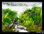 Aquasketch Bamboo Forest