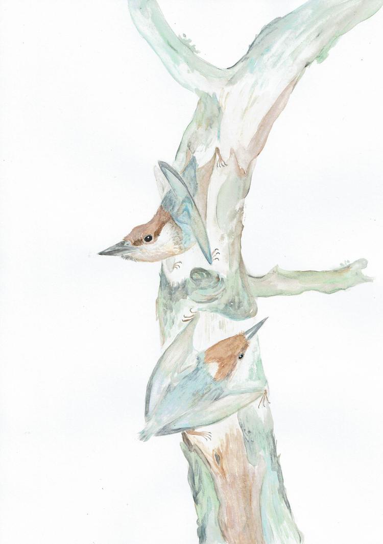 Nemicolopterus 2 by Kutchicetus-Minimus