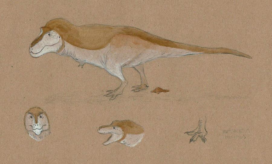 The obligatory nudist Tyrannosaurus by Kutchicetus-Minimus