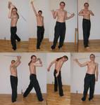 Sword Poses