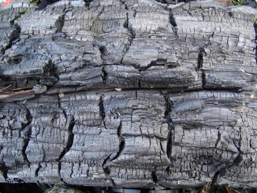 burned wood by Titelgestalten