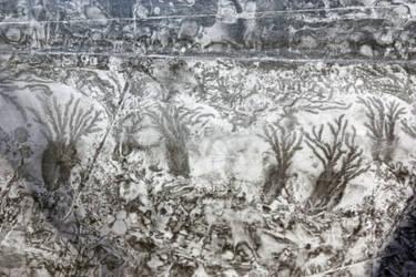 texture_7827 by Titelgestalten