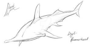 Shark Week Day 1: Hammerhead