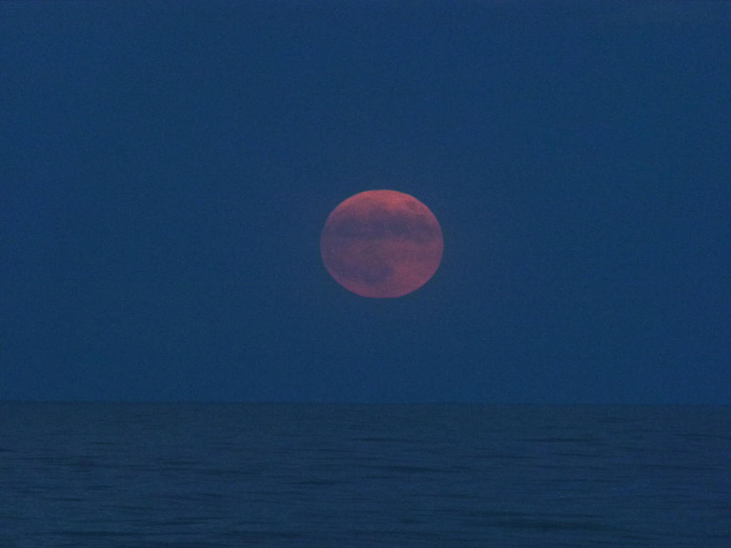 BloodMoonRise02 by ecfield