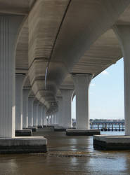 Beneath the Roosevelt Bridge