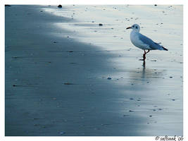 Lonely on the beach by saftsaak