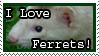 Ferret stamp by GuitarInk